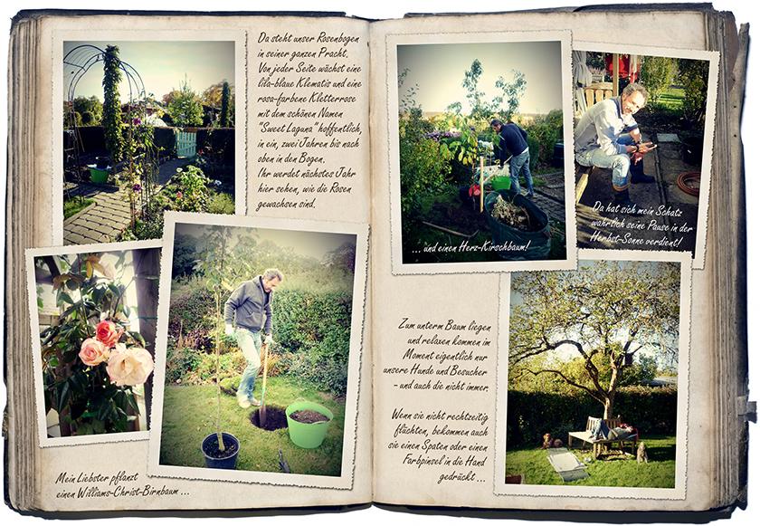 Oktober-Gartentagebuch 2