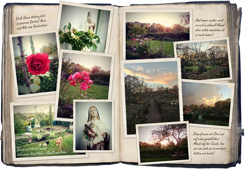 Oktober-Gartentagebuch 3