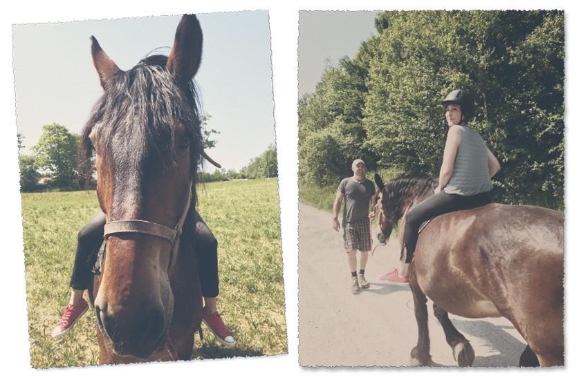 Endlich Pferd