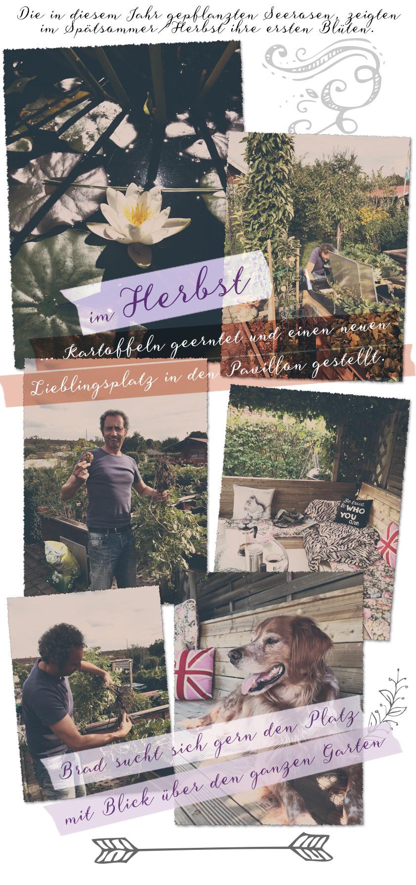Gartentagebuch_Herbst 2015