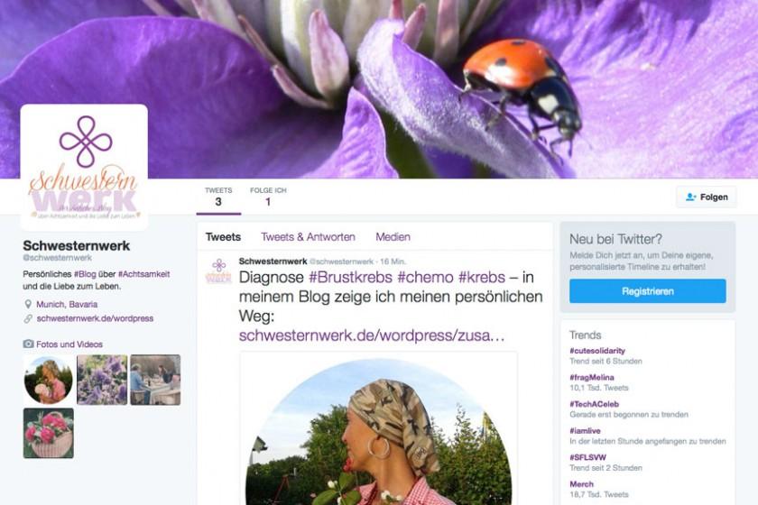 Twitter_Schwesternwerk