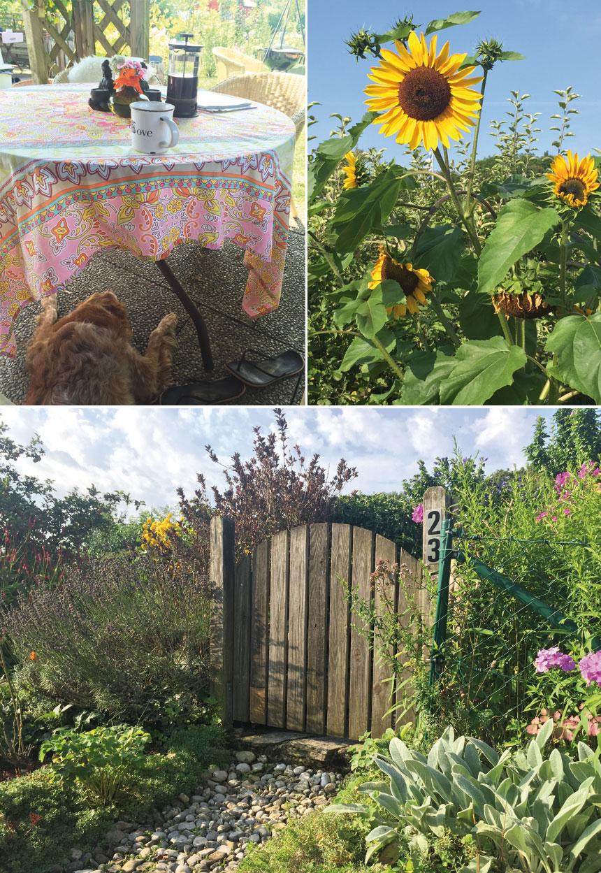 Gartensommen_Tag2-2