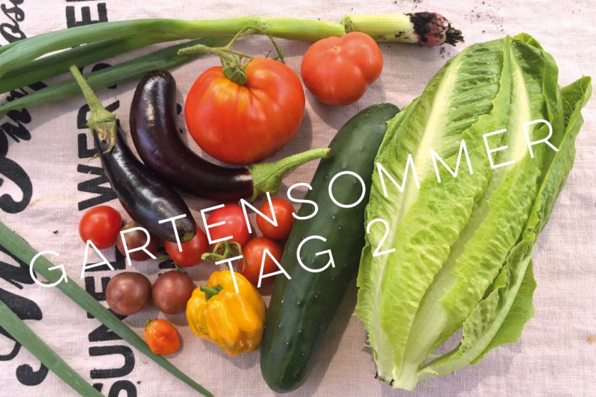 Gartensommen_Tag2-featured